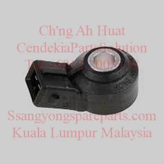 1611533628 Sensor Knock